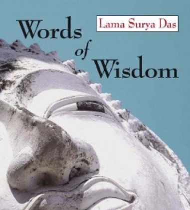 Words Wisdom on Lama Surya Das  Words Of Wisdom